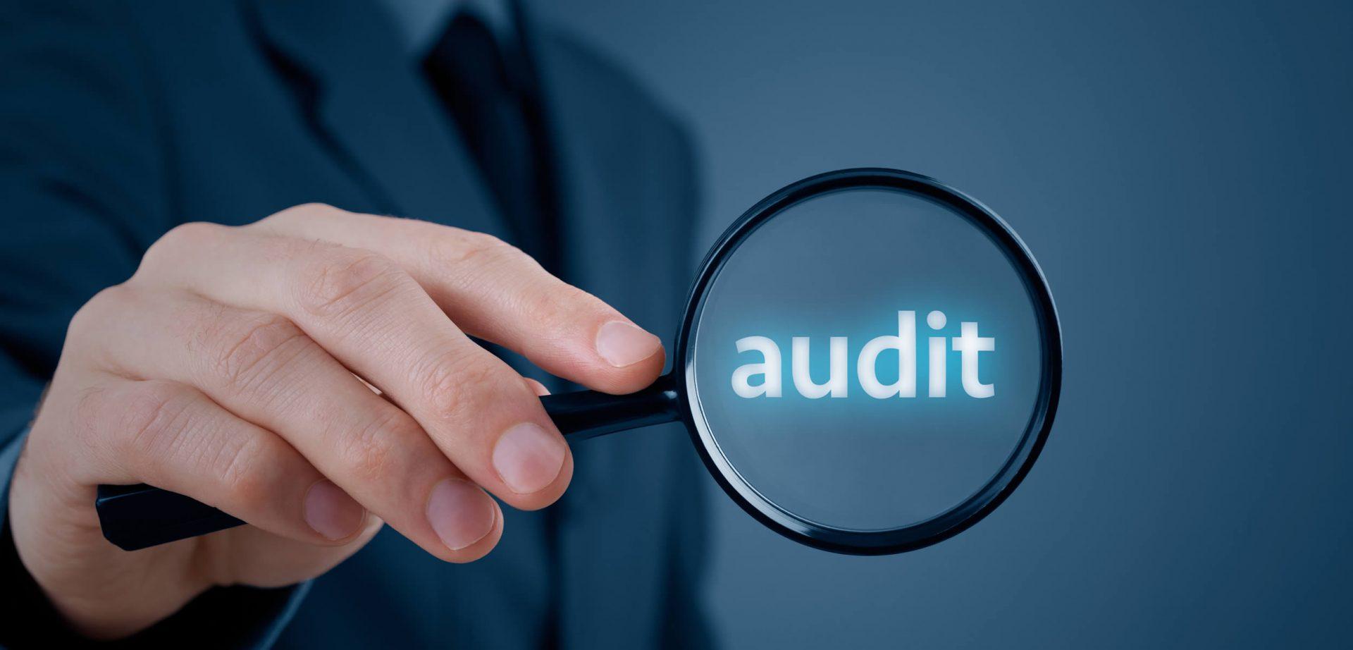 Training Audit Sistem Pengaman Perusahaan
