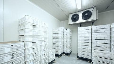 Training Cold Storage : Principle, Operation & Troubleshooting